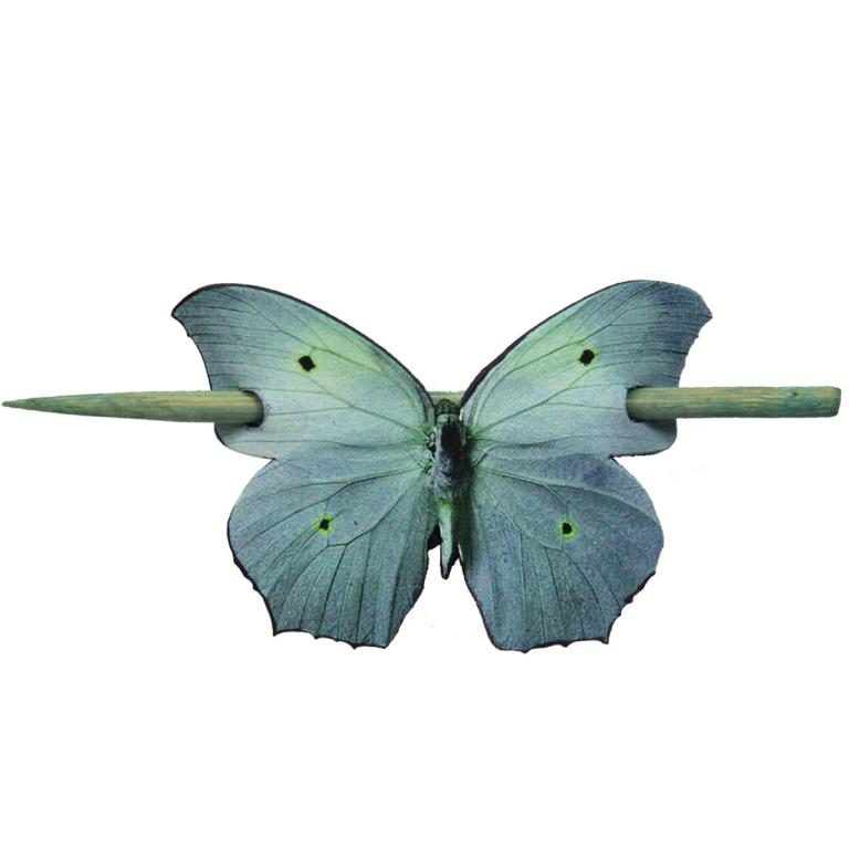 Butterfly tails 'Greenish blue'